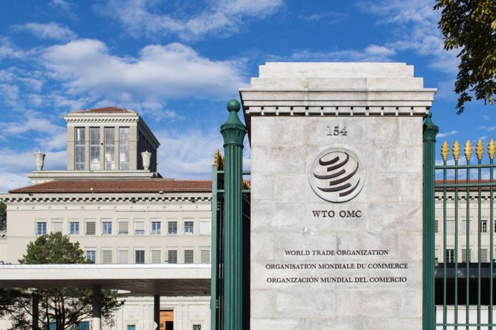 WTO provides and maintains a legal framework for the Offshoring of Outsourced work.